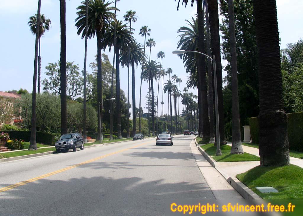 Beverly Hills, sur une avenue bordée de palmiers: comme au cinéma !